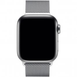 Loop Bracelet Apple Watch 38/40mm Silver