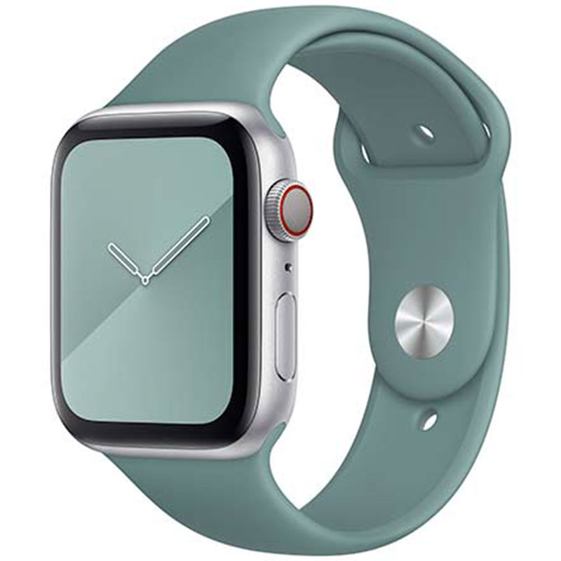 Silicone Bracelet Apple Watch 38/40mm Cactus Small